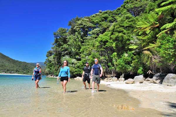 10 Day South Island Abel Tasman Walk Package