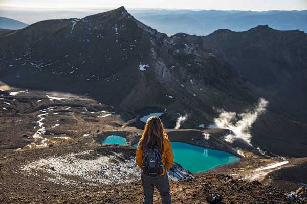 10 Day North Island Great Walks Package