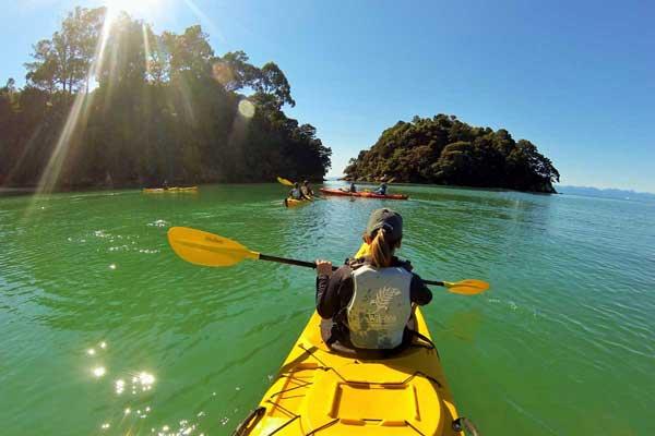Wilsons Abel Tasman Sea Kayaking | Day Trips