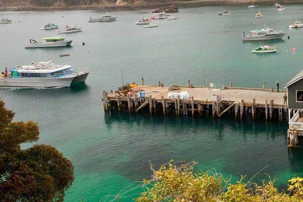 Stewart Island | Ferry Services