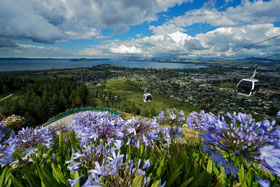 14 Day New Zealand Family Package