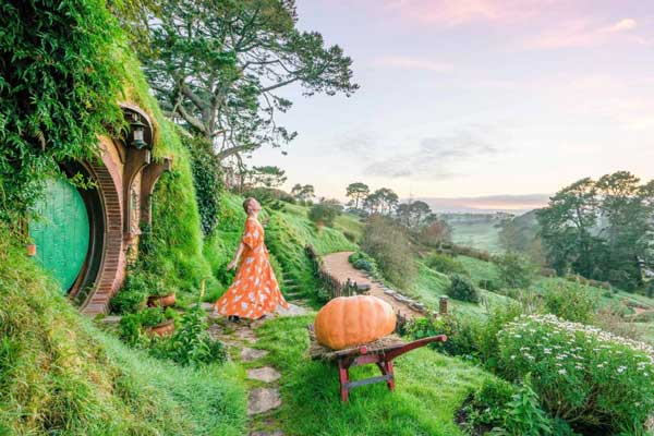 07 Day North Island Family Package