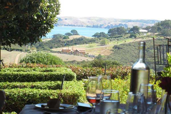 Fine Wine Tours | Boutique Auckland Wine Tours